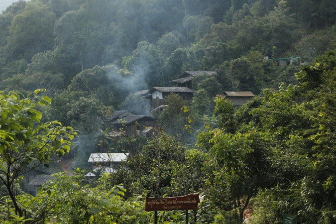 Forest around Huay Hin Lad Nai, Thailand, 2017